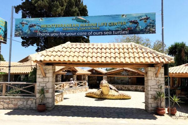 Zakynthos sea turtles information